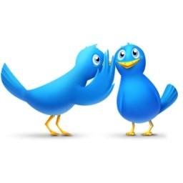 gossip_birds_101760 (1)
