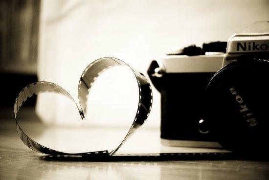 fotografia_2_-_reproducao